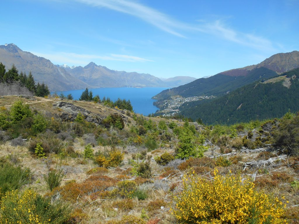 Queenstown, South Island, New Zealand