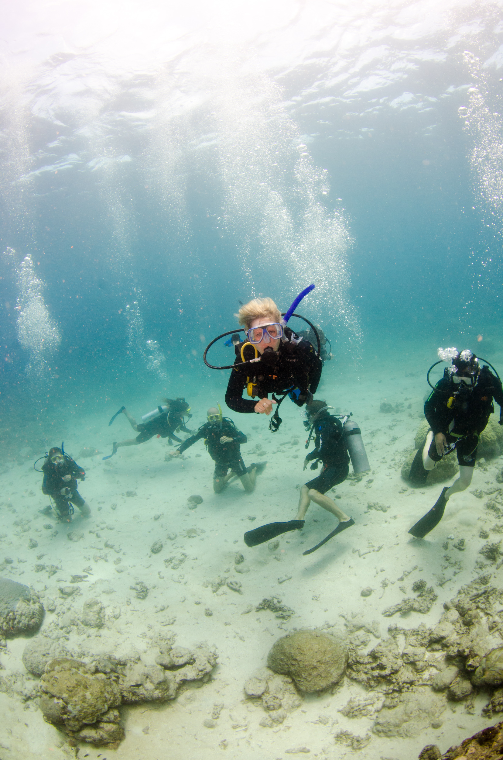 Diving at the Great Barrier Reef