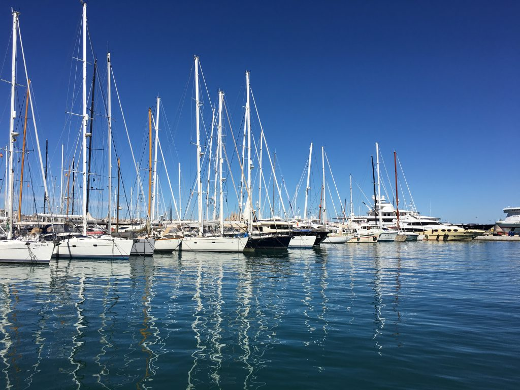 Hidden Gems and Gothic Stunners - Things to do in Palma, Mallorca